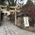 写真: 20171116 野見神社