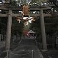 20171122 磐手杜神社