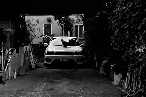 Photos: garage