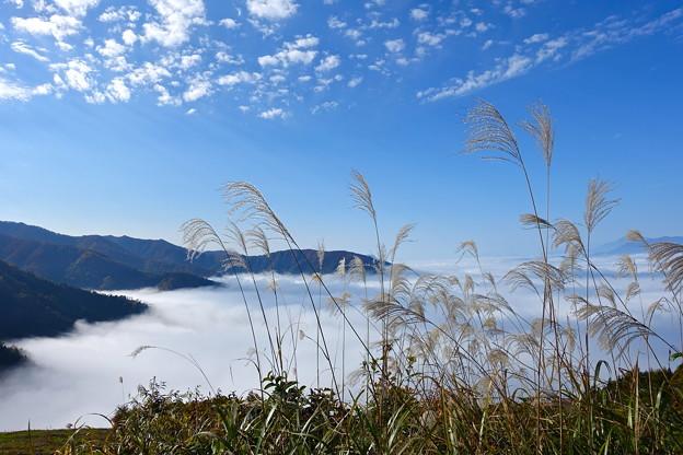 雲 海 2
