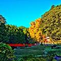 写真: 流谷八幡宮