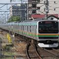 湘南新宿ラインE231系1000番台 K-16+U8編成