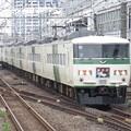 Photos: 踊り子185系0番台 C2+OM08編成