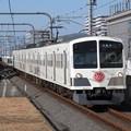 Photos: 西武多摩川線101系 1241F【多摩川線開業100周年HM赤】