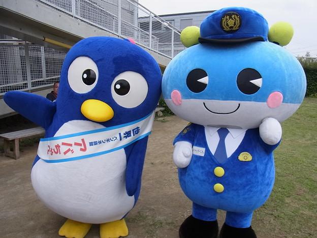 写真: 20170923 長崎ペンギン水族館01