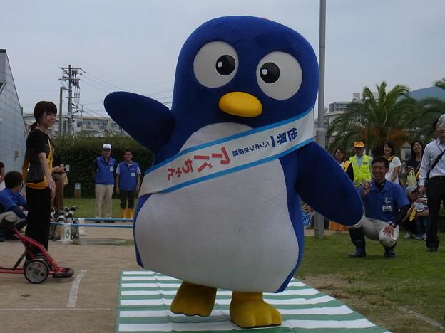 写真: 20170923 長崎ペンギン水族館07