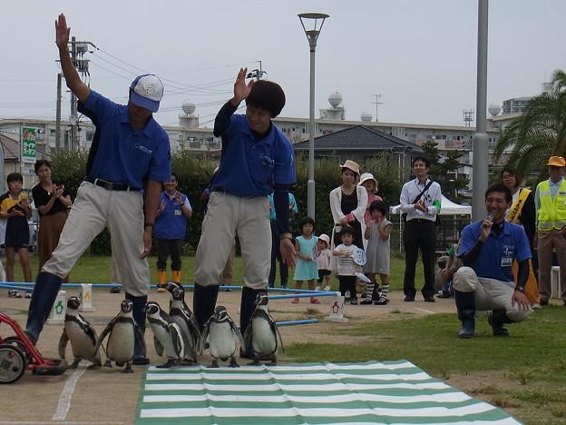 20170923 長崎ペンギン水族館08
