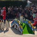 20171223 長崎ペンギン水族館28