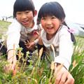 写真: 春みっけ!