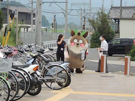 9/5(火) こもしかが菰野駅前でゆるキャラグランプリのPR活動してました。