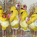 Photos: autumnmaids_ready_for_duty