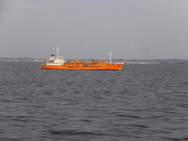 DSCF8945