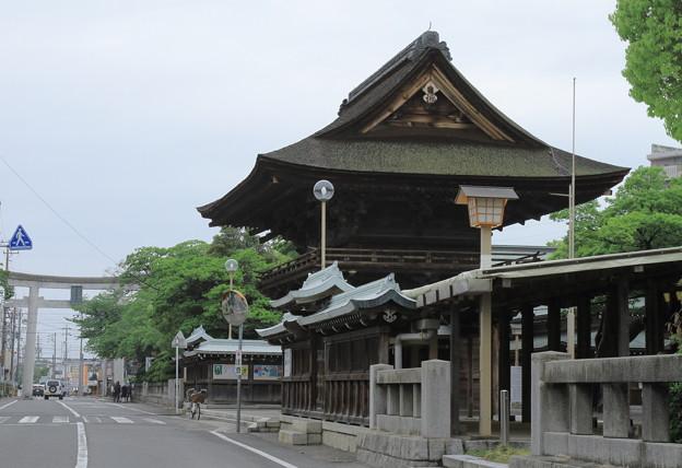 初夏ーみんなの神社