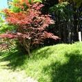 写真: 愛知県_亀山城址3