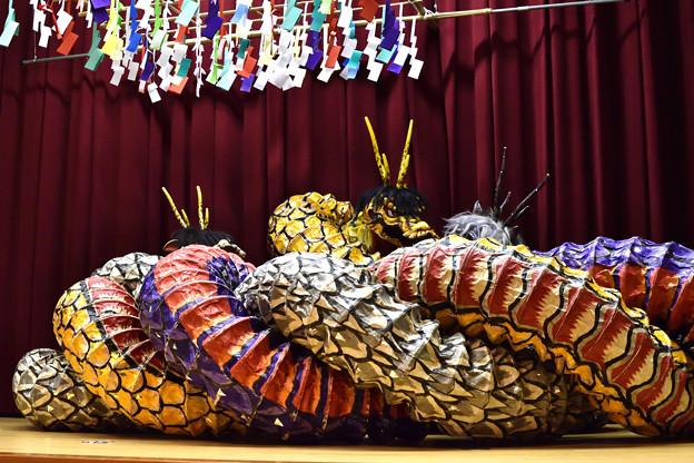 大蛇 14