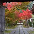 写真: 永興寺山門