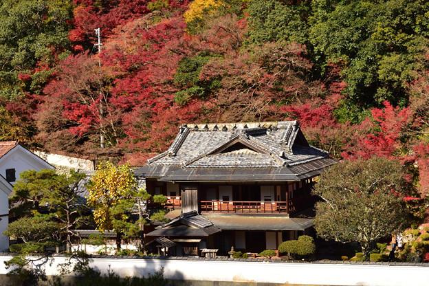 楽山荘と紅葉