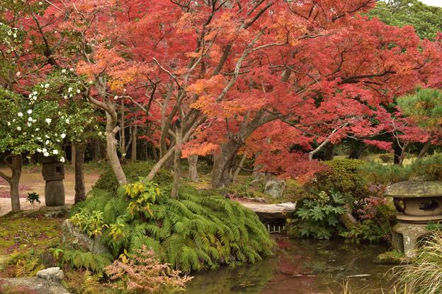 毛利氏庭園の紅葉 13