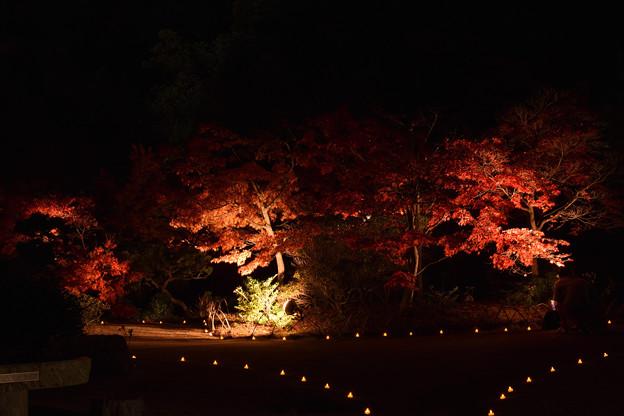 長府庭園 2