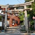 写真: 寺泊 白山媛神社 2