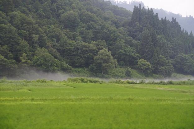 只見川の川霧
