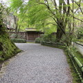 高山寺・石水院(参道)