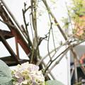 Photos: 錆階段と紫陽花