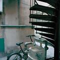写真: 螺旋階段
