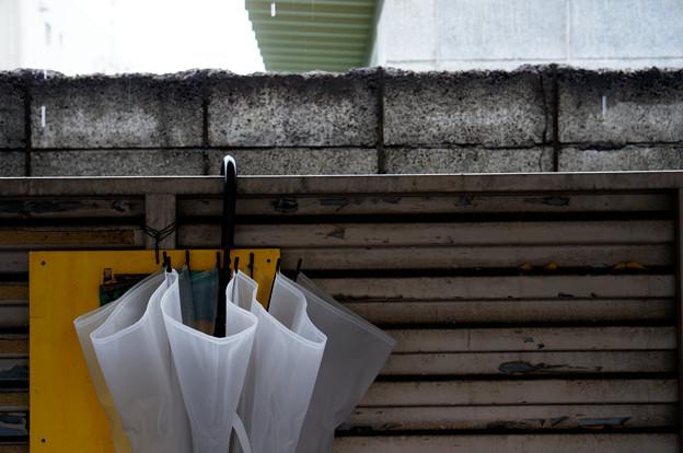 写真: 駐輪場-雨の日