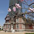 門司港の桜   DSC08933