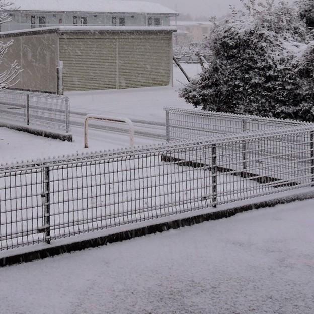 速報初雪・・2  2018:01:22