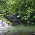 写真: 宮島峡 ヴィーナス像巡り ?水辺の像