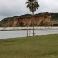 写真: 1.マリーナ海岸A