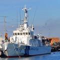 1.海上保安庁巡視船つくばと鴎の群れ-A