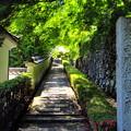 Photos: 善峯寺親王廟