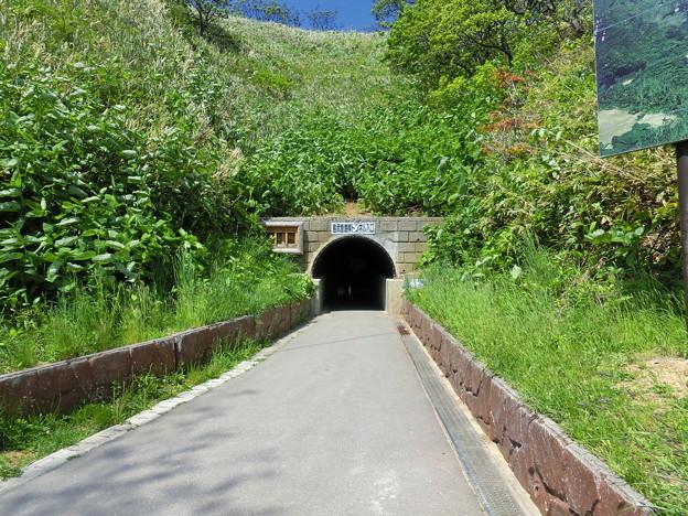 島武意海岸トンネル