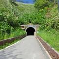 写真: 島武意海岸トンネル