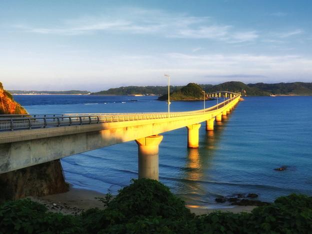 写真: 朝陽に輝く角島大橋