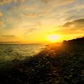鳴り石の浜 朝景