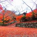 Photos: 毘沙門堂の紅葉2