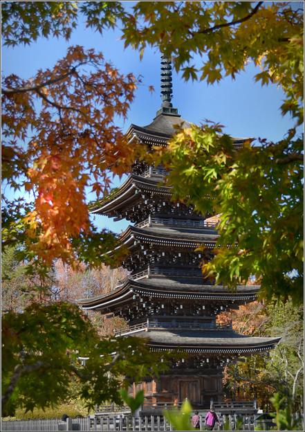 秋の五重塔