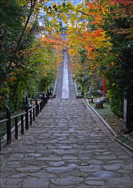 都市計画で造り直された参道