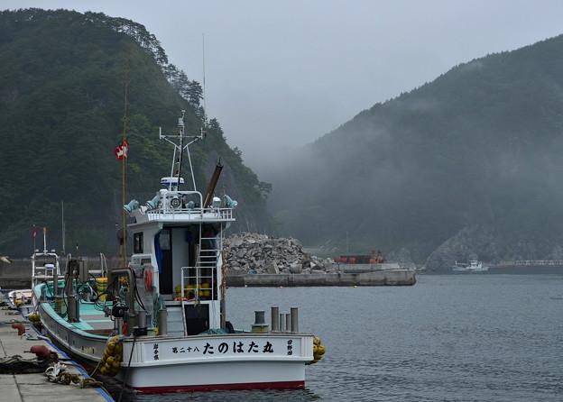 遊覧船欠航の海霧