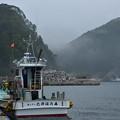 Photos: 遊覧船欠航の海霧