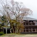 Photos: なつかしの分校