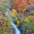 写真: IMG_0044蛇淵の滝