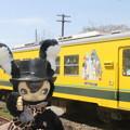写真: ムーミン列車とともに