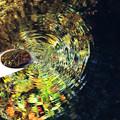 写真: 生水の波紋