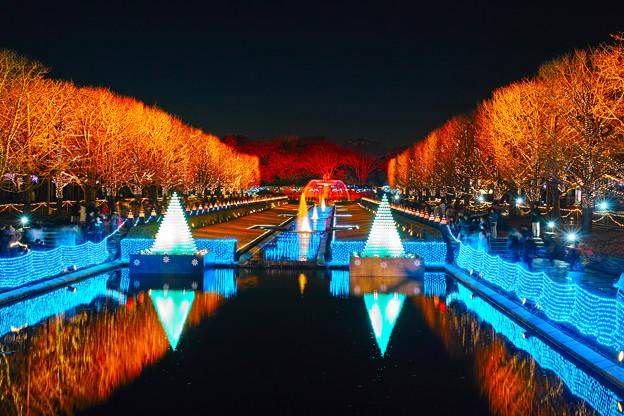 昭和記念公園2017