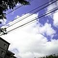 写真: 2009-08-17の空1